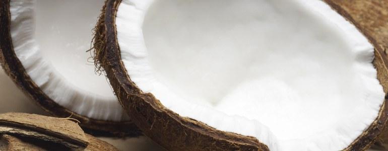 alternative-kokosnuss