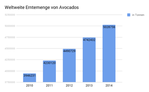 Erntemenge Avocados
