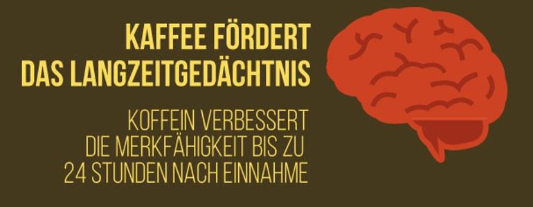 Kaffee Langzeitgedaechtnis