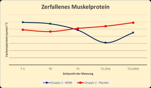 MSM Grafik Oxidiertes Muskelprotein 513x300 - MSM - Was kann der organische Schwefel?