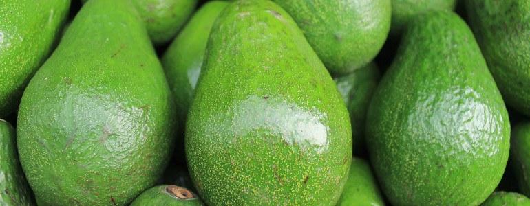 Natuerliche Appetitzuegler - Macht Avocado dick?