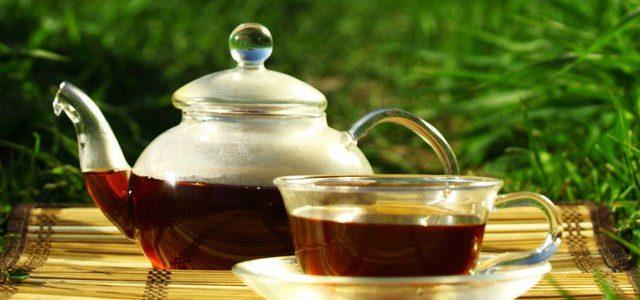 Stoffwechsel anregen mit Tee