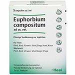 euphorbium compositum ampullen 150x150 - Wolfsmilch – giftig, aber nützlich