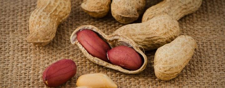 Machen Erdnüsse dick