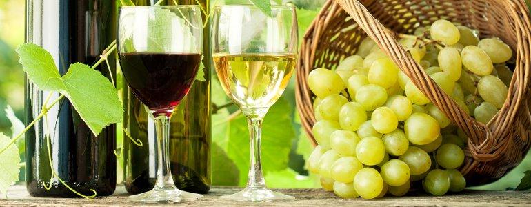 Macht Wein dick?