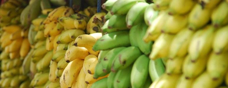 natuerliche Probiotika Bananen