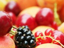 die Obst-Diaet