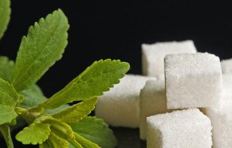 Als Zuckerersatz eignet sich Stevia